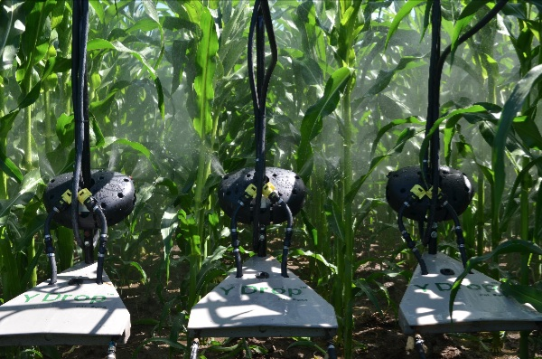 TARGETED APPLICATION. An attachment to the Y-Drop application units is the 360 UnderCOVER spray applicator. This tool can apply fungicides, insecticides or other nutrients underneath the canopy of corn plants, spraying up toward the bottom of leaves, which can help target and combat invasive pests.  Photo courtesy of 360 Yield Center