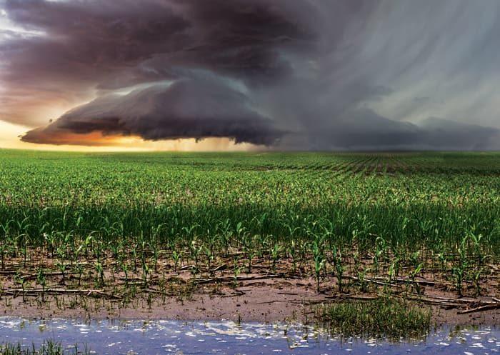 Climate-Change-Main-Image.jpg