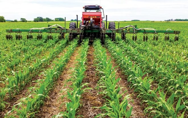 Getting Out of the Rut with Cover Crop Interseeding, Weed Suppression