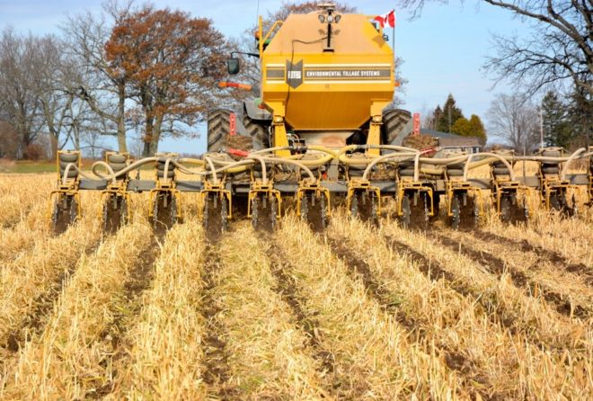Is Organic Strip-Till an Opportunity or Obstacle?