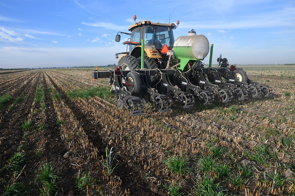 Cutting Into the Hay & Forage Market with Strip-Till