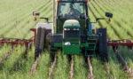 seeding-brassicas-as-a-cover-crop.jpg