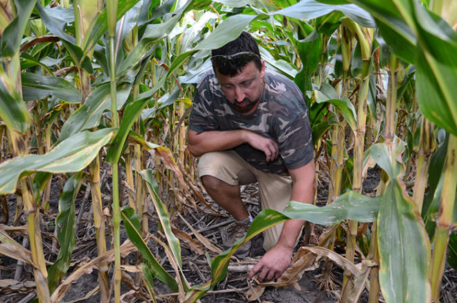 5 Strategies for Managing Heavy Residue on Continuous Corn