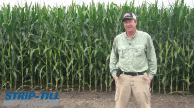 Maximizing Yield Potential With Variable-Rate Recommendations