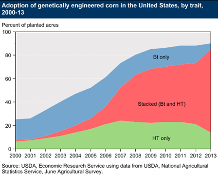 Adoption of genetically engineered corn